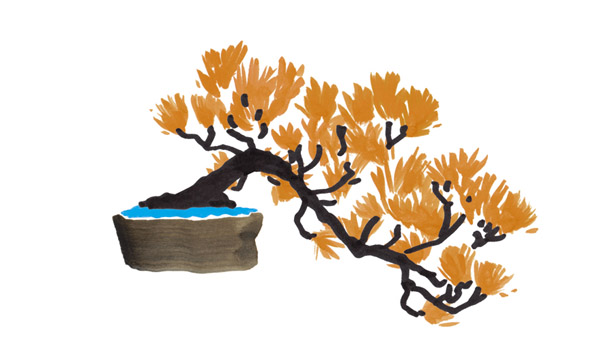 bonsai_two_tiana_astikainen